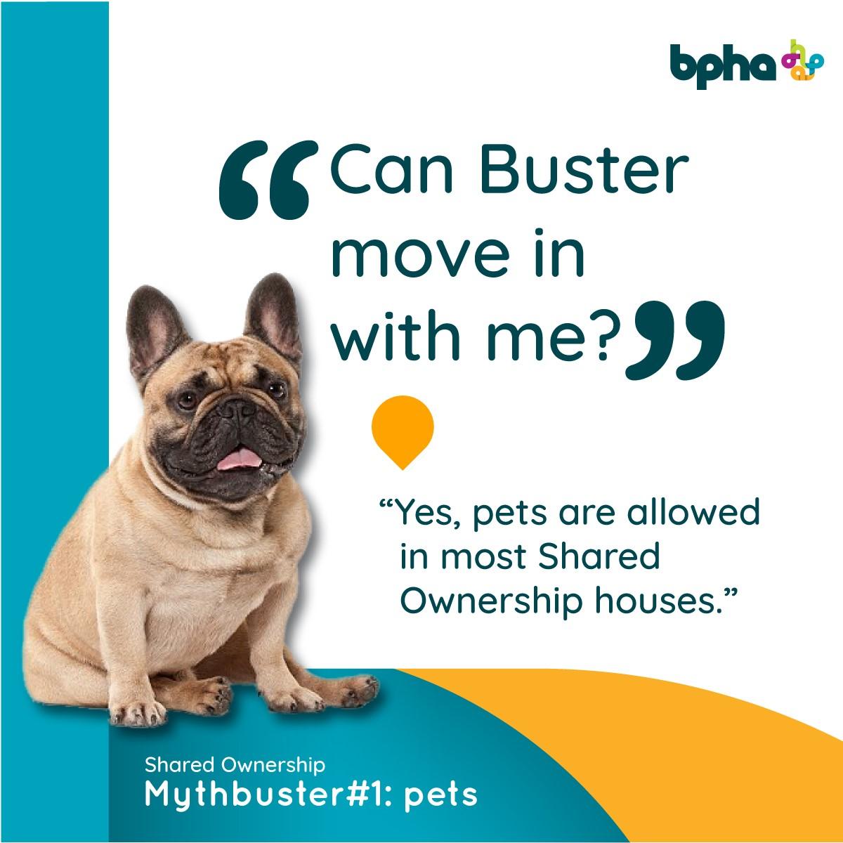 Shared Ownership mythbusters - bpha