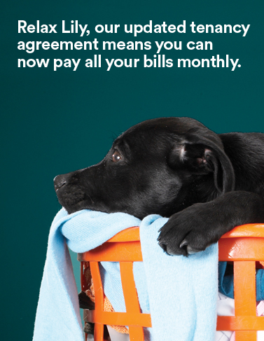 Updated tenancy agreement adver